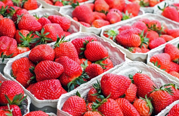 Pick your own strawberries and make our Eton Mess
